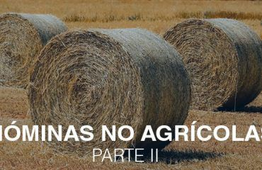 nominas no agricolas2